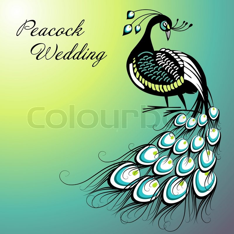 Stock vector of 'Peacock Card'