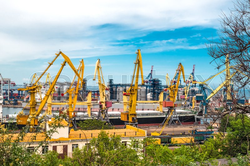 Big ship and cranes in the sea port load and unload cargo on a summer day, stock photo