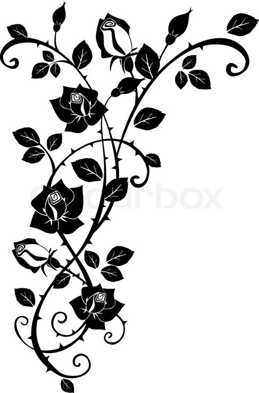 Stock vector of 'Vector graphic of Rose with leaves'
