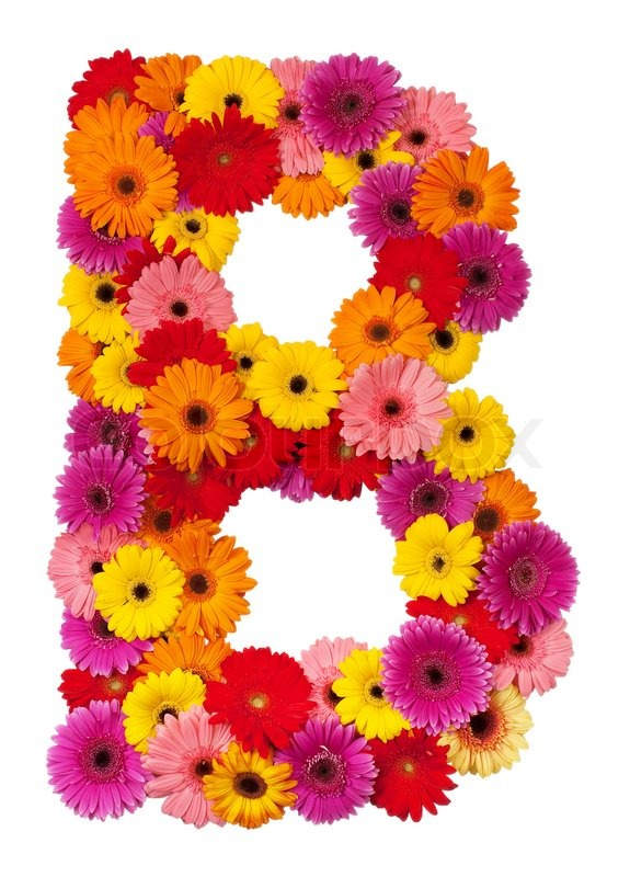 Letter B Flower Alphabet Isolated On White Background Stock