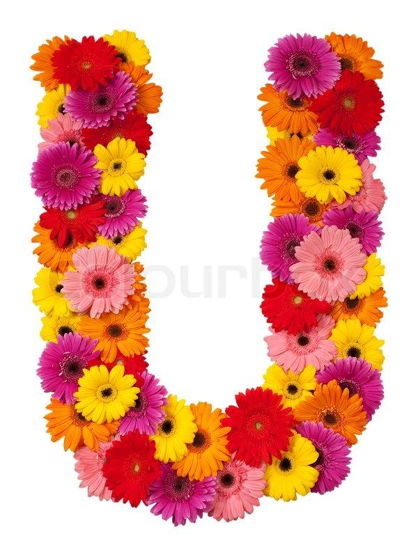 Letter U Flower Alphabet Isolated On Stock Photo Colourbox