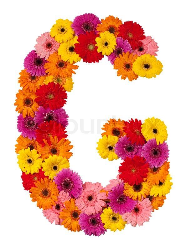 Letter G Flower Alphabet Isolated On Stock Photo Colourbox