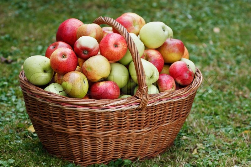 Natural Fresh Food