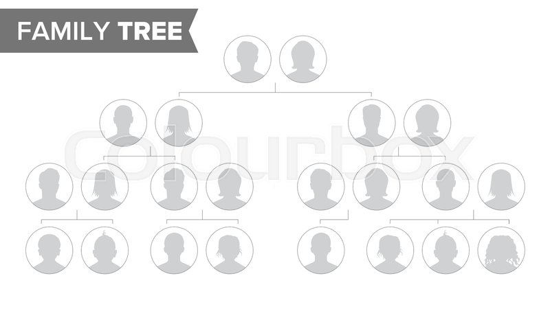 Genealogical Tree Template Vector Family History Tree With Default