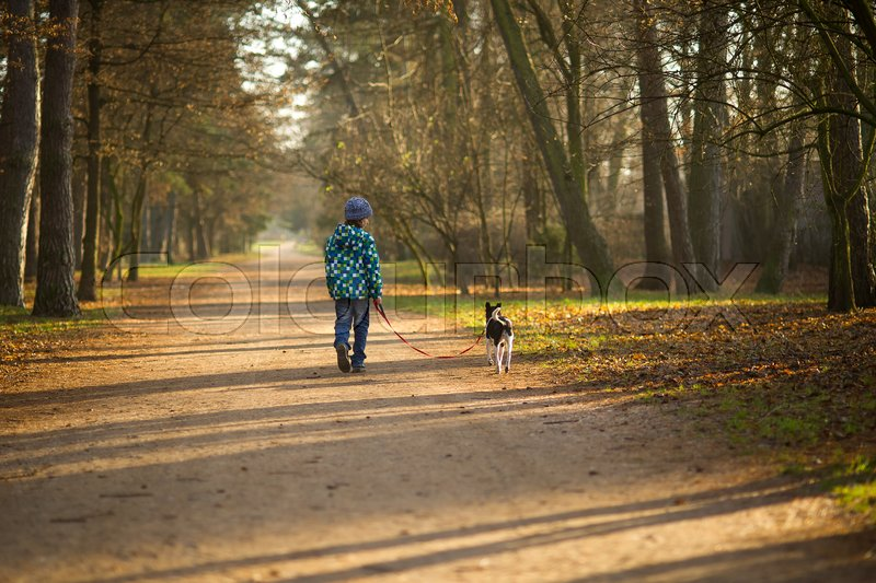 Boy 10-11 years walking the dog in autumn Park. He is holding the leash of a black-and-white cute dog, stock photo