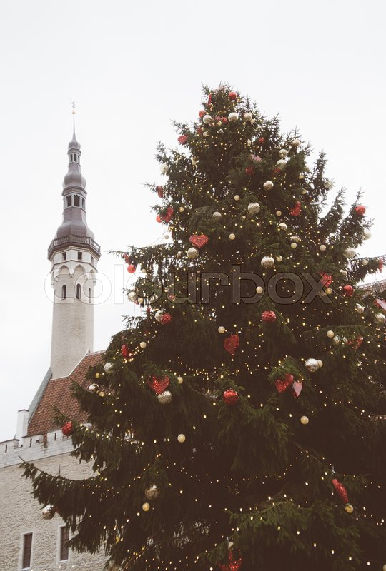 Christmas tree at the Town Hall Square in Tallinn, stock photo