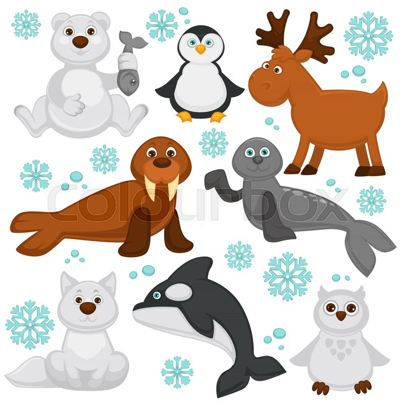 Polar Animals And Arctic Fish Cartoon Characters Vector Funny