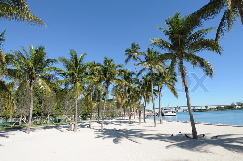 How To Get From Miami Airport To Palm Beach