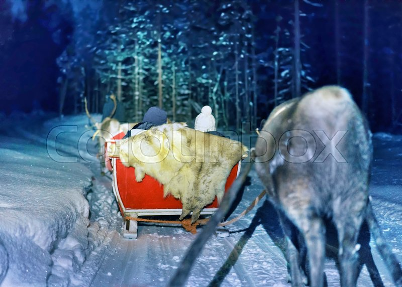 People in reindeer sleigh at night safari in the forest of Rovaniemi, Lapland, Finland. Toned, stock photo