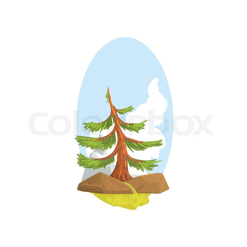 Cartoon Landscape With Evergreen Pine Stock Vector Colourbox The best selection of royalty free evergreen tree cartoon vector art, graphics and stock illustrations. cartoon landscape with evergreen pine