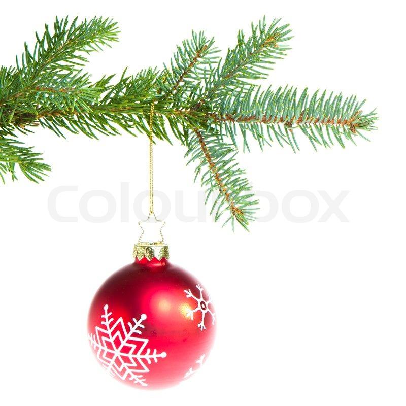 Weihnachtskugel am zweig isoliert auf wei em hintergrund - Bilder weihnachtskugeln ...