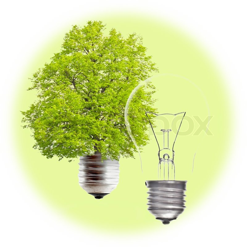 Electric Light Bulb And Green On A White Background The Concept Of Renewable Energy