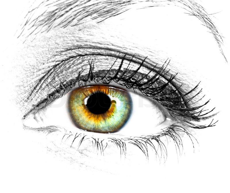 Beautiful Eye Of Woman Over White ...