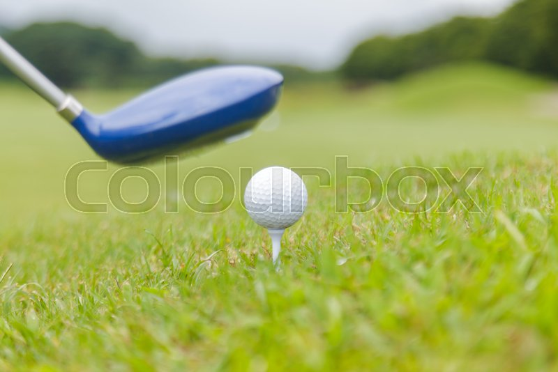 Golf club and golf ball on golf course, stock photo