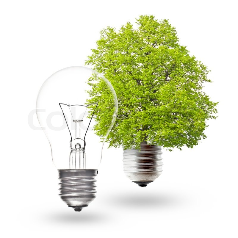 Light Bulb Wallpaper: Electric Light Bulb And Green Light Bulb On A White