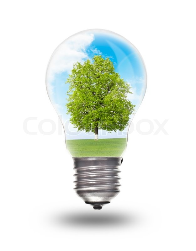Light Bulb With Landscape Inside Isolated On White Environmental Concept Renewable Energy