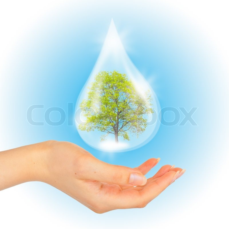 drop of water with tree inside and hand the symbol of save