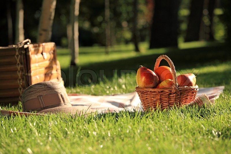 d444c441840c Stock image of  Picnic basket with fruits on grass in summer park