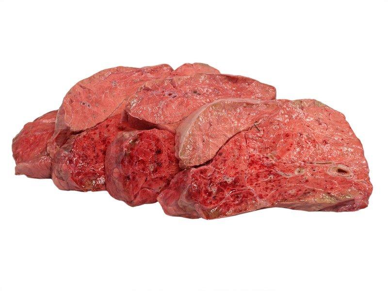 Geschnitten ungekocht Kuh Lunge auf einem weißen Hintergrund ...