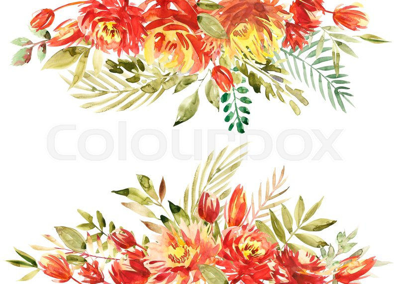 Colorful Watercolor Flower Border Painted Background Isolated On White Stock Photo