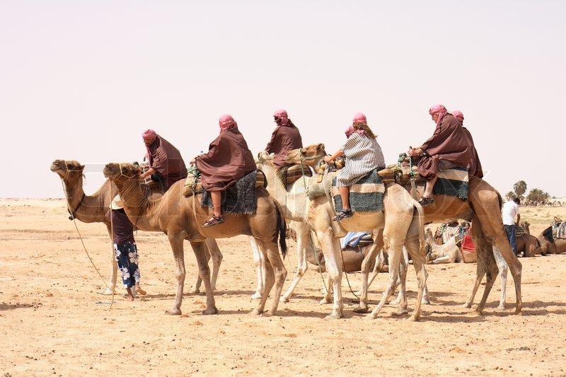 Awesome Camel Caravan Cartoon Camel