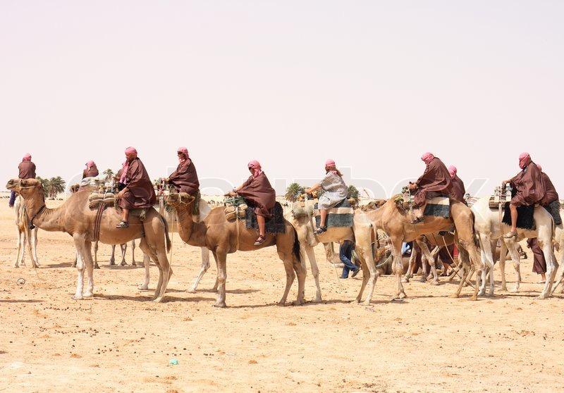 Camel caravan on the sahara desert in the tunisia | Stock ...