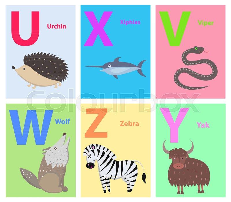 Alphabet set of six letters U X V W Z  | Stock vector | Colourbox