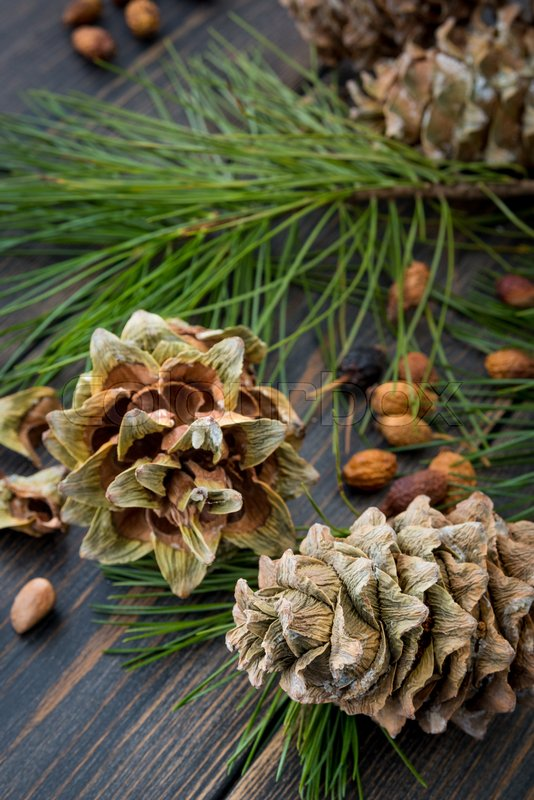Resinous husked pine-cones with pine nuts, needles and pine branches on dark wooden background , stock photo