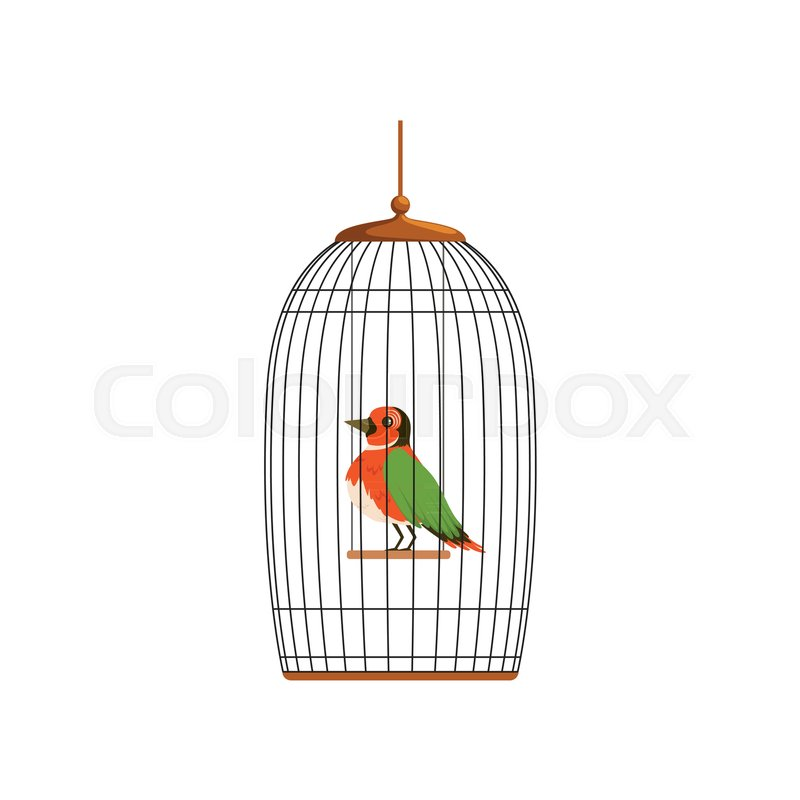 Elegant bird with colorful feathers sitting on horizontal bar in ...