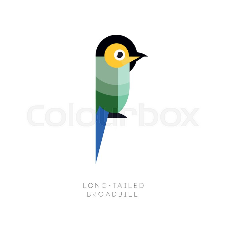 Logo template of colorful long-tailed broadbill. Small exotic bird ...
