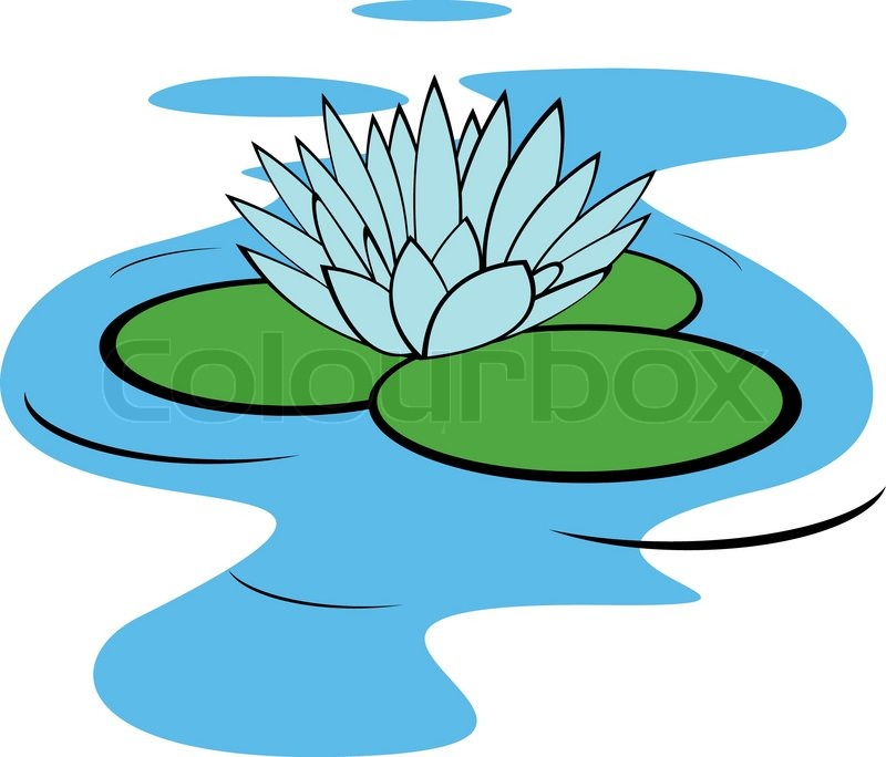 Vector Illustration Of Water Lily Flower Stock Vector