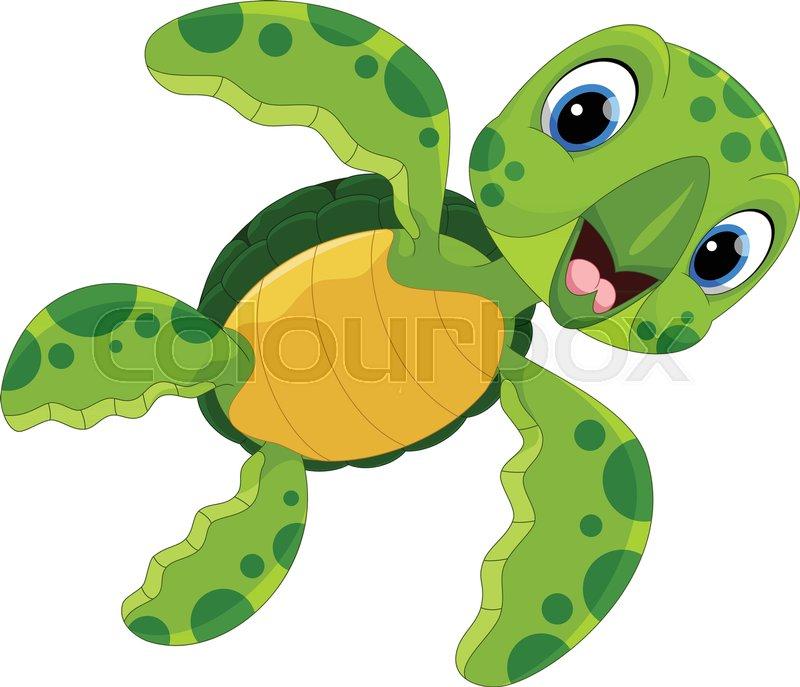 vector illustration of cute turtle cartoon isolated on white