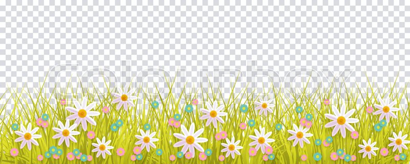 grass and flowers border. Fine Flowers Spring Grass And Flowers Border Easter Greeting Card Decoration Element  Flat Vector Illustration Isolated On Transparent Background With Grass And Flowers Border F