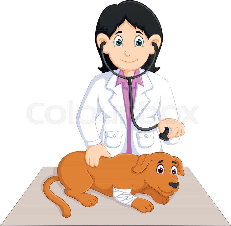 Vector illustration of beauty veterinarian cartoon check ...