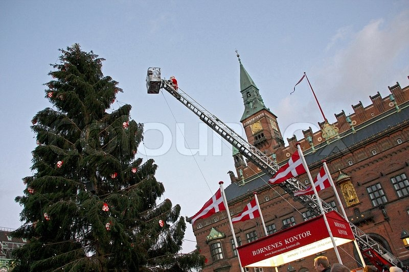 http://www.colourbox.com/preview/3051647-480835-christmas-tree-in-copenhagen.jpg