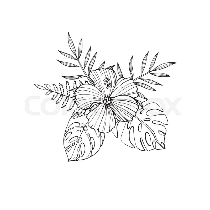 a2e7f2438 Tropical flowers - hibiscus, protea, ... | Stock vector | Colourbox