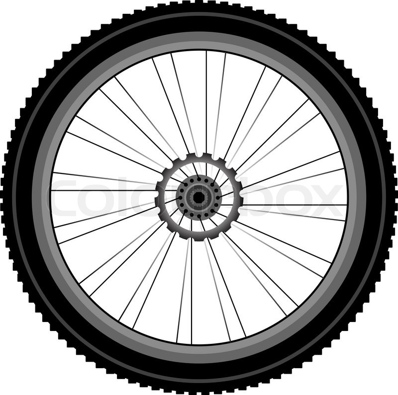 bike wheel with tire and spokes isolated on white background stock rh colourbox com