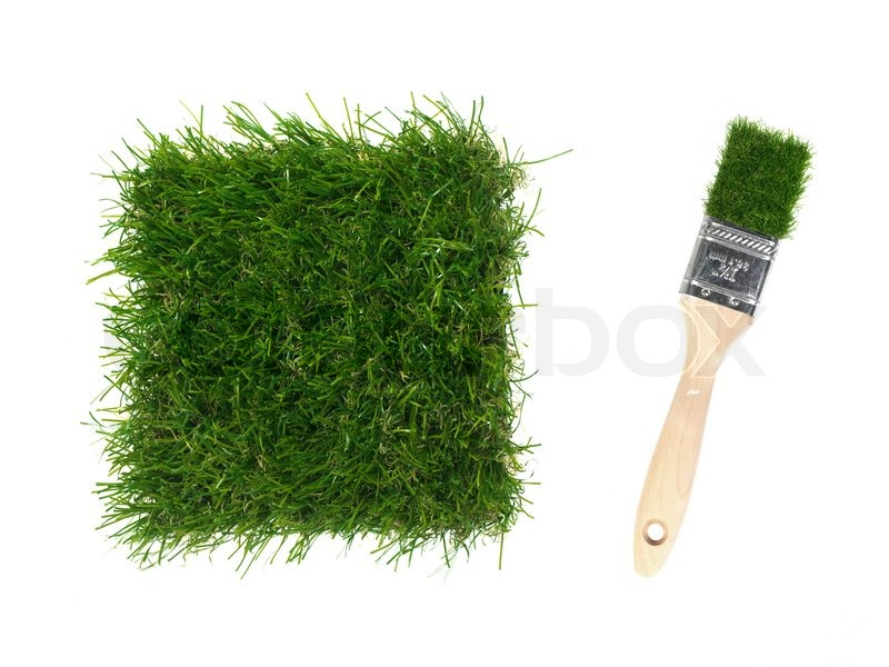 A Close Up Image Of Artificle Grass And A Paint Brush