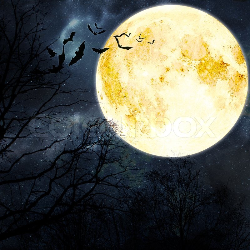 Halloween background Bats flying in the night with a full moon in ...