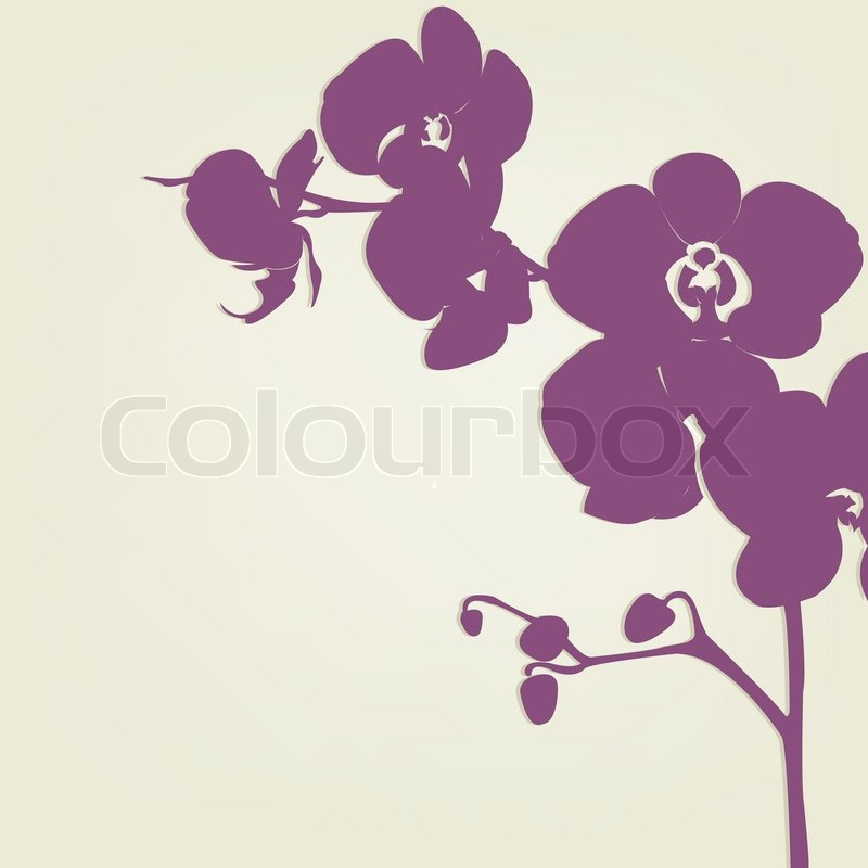 Orchid Branch Silhouette, Vector Illustration   Stock ...