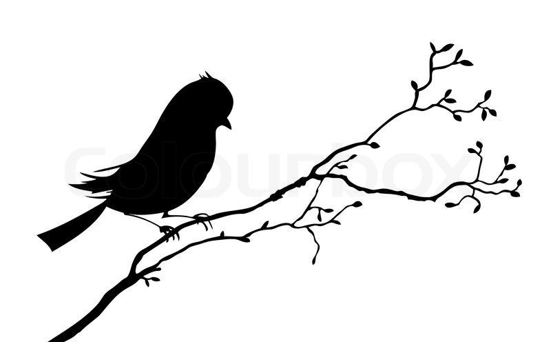 Bird Silhouette On White Background Vector Illustration