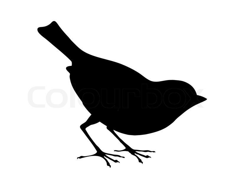 vogel silhouette auf wei em hintergrund vektor illustration vektorgrafik colourbox. Black Bedroom Furniture Sets. Home Design Ideas