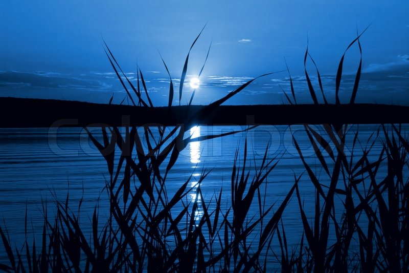 Beside the moonlight River 3070258-757381-mystical-night-moonlight-on-the-river
