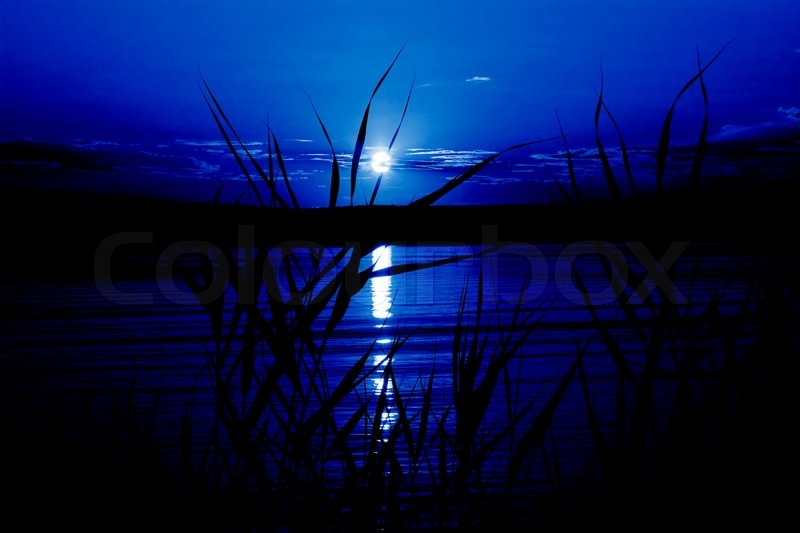 Mystical night (moonlight on the river, in dark blue ...