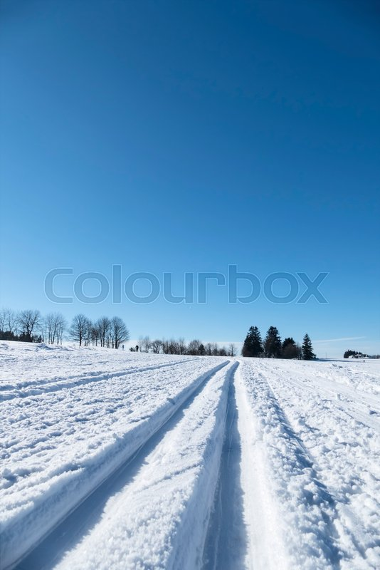 Winter sports cross-country skiing, symbol of sports, winter holidays, nature, stock photo