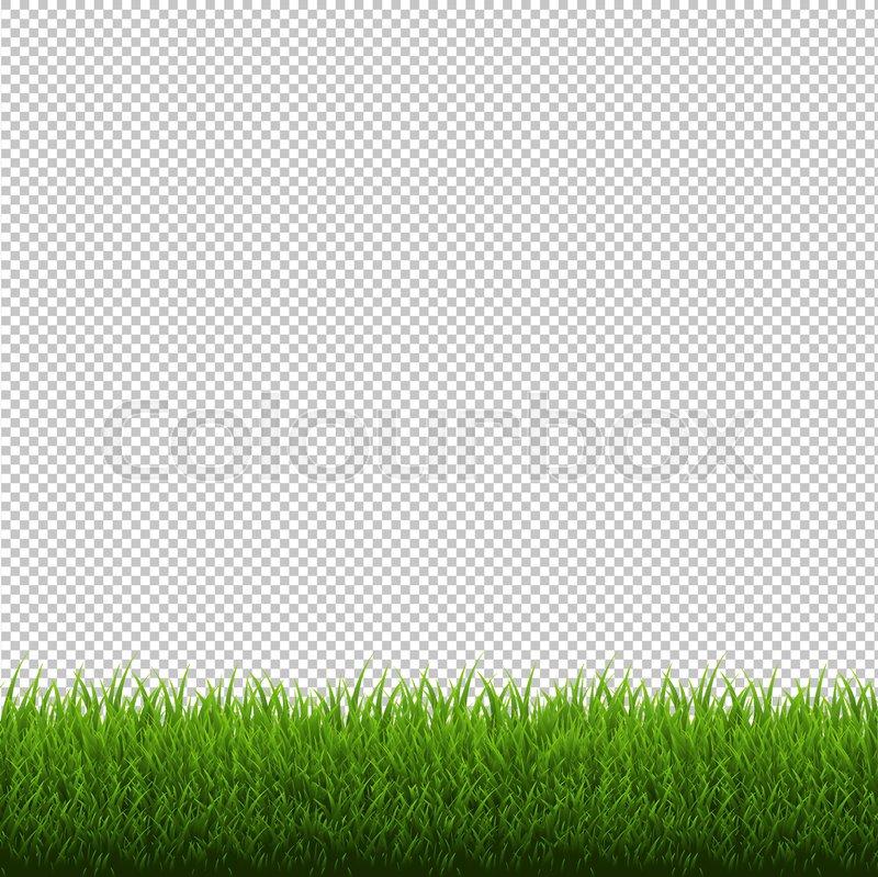 grass border no background golf grass border isolated transparent background vector illustration stock colourbox