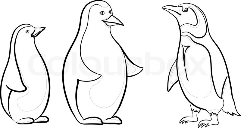 antarctic emperor penguins black contours on white background