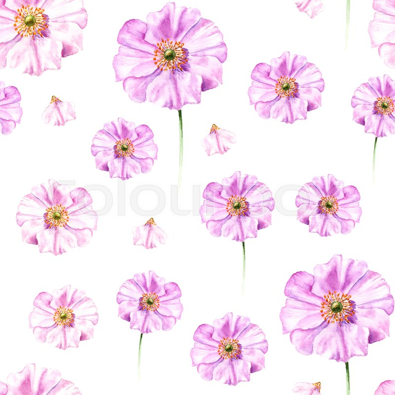 Handpainted Watercolor Seamless Pattern With Flower Anemone It Is