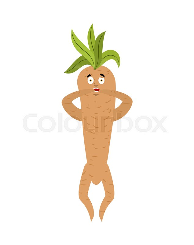 Mandrake root scared OMG. Oh my God emotions Legendary mystical plant in form of man. , vector