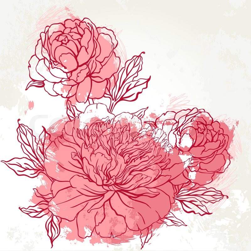 Chinese Flower Line Drawing : Beautiful peony bouquet design on beige background hand